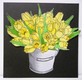 Class June Tulips